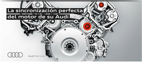 Oferta Correa de Distibucion Sealco Motor